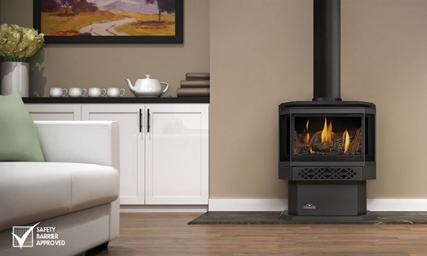 GDS28 1NSB Direct Vent Gas Stove By Napoleon