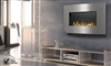 "WHD31 Plazmafireâ""¢ - 30"" Gas Fireplace by Napoleon"