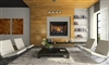 High Definition HD46 Direct Vent Gas Fireplace