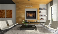 "HD46 - 46"" Gas Fireplace (Direct Vent) Made by Napoleon"