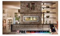 Vector LV50N2 See-Thru Linear Gas Fireplace (Direct Vent) by Napoleon
