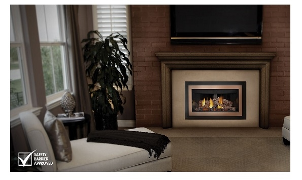 Gdizc Gas Fireplace Insert Direct Vent By Napoleon