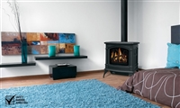 Knightsbridge GDS60 Direct Vent Gas Stove by Napoleon
