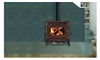 1100C Wood Burning Stove by Napoleon